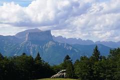En balade sur le Mont Barral (Cédric JANODET) Tags: triumph 1050 speed triple alpes barral sautet barrage izoard vars bonette couillole cayole lautaret galibier télégraphe croixdefer alpedhuez
