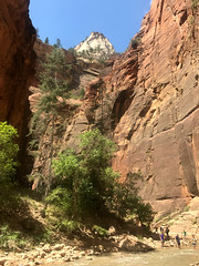 Hiking the Narrows Zion National Park (Explored) (Don Mosher Photography) Tags: