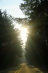 IMG_4384 (Bites N Sites) Tags: seattle washington mount rainier mather memorial parkway smoke wild fires