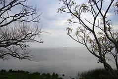 sin titulo (galoware) Tags: uruguay coloniadesacramento colonia colonial arquitecturacolonial riodelaplata sel1018 rio rivera velero sailboat