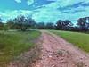 Paisaje1 (yajat54) Tags: nogales sonora picnic terrenos cabañas cabins nature naturaleza