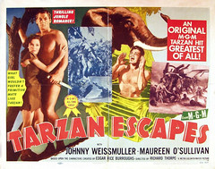 Tarzan Escapes (1936, USA) - 03 (kocojim) Tags: maureenosullivan illustrated kocojim poster johnnyweissmuller publishing advertising film illustration motionpicture movieposter movie