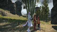 A Line Up In Front of a Bamboo Forest (elynxabeth✿) Tags: ffxiv ff xiv final fantasy miqote white mage stormblood lyse isse bamboo glittering basin yanxia othard