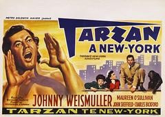 Tarzan's New York Adventure (1942, USA) - 02 (kocojim) Tags: publishing illustrated kocojim johnnysheffield poster johnnyweissmuller maureenosullivan film advertising illustration motionpicture movieposter movie