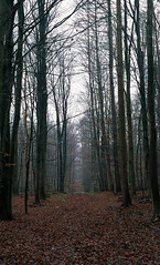 Film # 046 - Scan - 36 (Sven Kaschmir) Tags: minolta xd7 agfa vista 200 36 digibase c41 readytousekit 25 grad 13 min analog