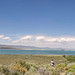 Mono Lake Tufa Nature Reserve