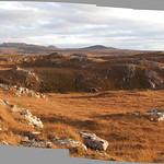 Across the bog... thumbnail