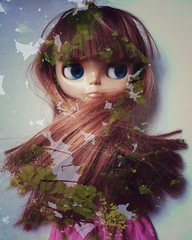 Blythe double exposure forest