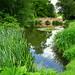 Warren Ponds and the Terracotta Bridge at Castle Ashby Gardens