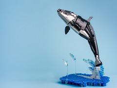 2 Killer whale (timofey_tkachev) Tags: lego moc afol orca killer whale sea