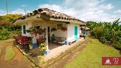 Un recorrido por las fincas cafeteras (Federación Nacional de Cafeteros) Tags: fincacafetera finca café colombiacafetera colombia
