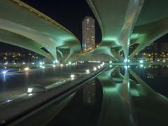 Ciudad de las artes y las ciencias (:) vicky) Tags: cac vickyepla valencia visionario comunidadvalenciana reflejos reflections night nocturna luz light spain