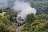 A4 on Sapperton 1 (D1059) Tags: 60009 unionofsouthafrica 462 pacific a4 gresley britishrailways uksteam 1z52 1634worcestershrubhillpaddington thecostwoldventurer railtour goldenvalley sapperton
