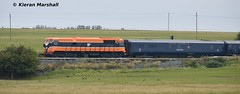 073 passes the Curragh, 27/8/17 (hurricanemk1c) Tags: railways railway train trains irish rail irishrail iarnród éireann iarnródéireann 2017 belmond grandhibernian luxurytrain generalmotors gm emd thecurragh kildare 073 1005connollywaterford