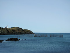 Pettes Cove at North Head on Grand Manan Island (Bay of Fundy), New Brunswick (Ullysses) Tags: pettescove grandmananisland bayoffundy newbrunswick canada summer été herringweir swallowtaillighthouse northhead