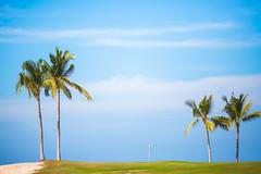 A Day on the Course (Thomas Hawk) Tags: fourseasons fourseasonspuntamita hotel mexico putnamita golf golfcourse resort fav10 fav25