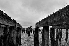 Old Pier (WilliamND4) Tags: water pier bw blackandwhite provincetown massachusetts clouds cloudy wood nikon d750