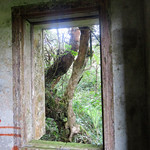 Workers Quarters, Old Royal Summer Residence, Bokor NP thumbnail