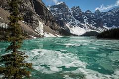 Moraine Lake (mgirard011) Tags: field alberta canada ca 200faves