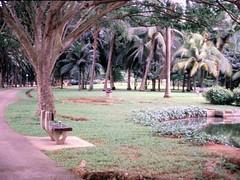 1994_Singapore_2016-07-18_Photo_024 (Matthias & Paula) Tags: singapore sentosa kuala lumpur malaysia cameron highlands zoo japanese gardens