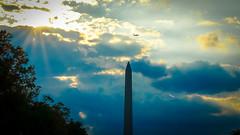 2017.09.17 DC People and Places Washington, DC USA 8835