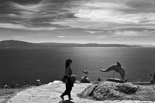 Delfines de piedra - Stone dolphins