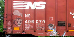 digit - feral child - horror city (timetomakethepasta) Tags: digit feral child horror city ns boxcar freight train graffiti art moniker tag norfolk southern benching selkirk new york photography