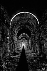 Light In Dark (MilkieBear) Tags: canon80d snoqualmietunnel johnwaynetrail pnw greatnorthwest traintunnel longestfoottunnel 2017 sigma20mm sigma20mmartlens wideangle blackwhite bw blackandwhite whiteblack tunnel washingtonstate washingtontrails underground 20mmf14 canoneos80d photography textures biketrail bikeway rail road old railway shadow abandoned light reflections