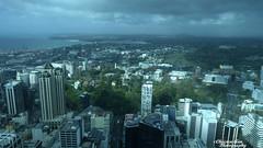 P1460429 (Christen Ann Photography) Tags: 2017 auckland august2017 cityscape landscape newzealand ocean park rain sky skytower weather