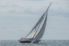 Foglio view 1 (Matchman Devon) Tags: classic channel regatta 2017 paimpol foglio