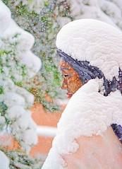 SAINTLY (Irene2727) Tags: santafe newmexico snow weather statue stkateritekakwitha americanindian saint snowflakes history
