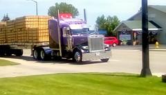 Truckin' down Highway US 41- HTT (Maenette1) Tags: truck longhaul highwayus41 transportation motel menominee uppermichigan happytruckthursday flicker365