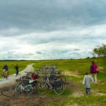 Bikeparking in flatlands thumbnail