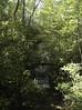 pisgah 9-26-17-13 (jimlustgarten) Tags: pisgah lustgarten waterfall