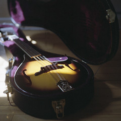 Mandolin (Kelann C-W) Tags: bronicasqa bronica fujipro400 fujicolorpro400h film mediumformat 120mm montreal mandolin instrument 6x6 square format