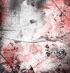 Fading (extremely fickle) Tags: me manipulation brushes red portrait