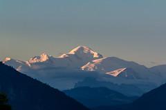 Le mont blanc au petit jour depuis Champellant  Féternes Gavot Chablais Haute Savoie (roland.grivel) Tags: montagne paysage gavot feternes montblanc champellant 74 haute savoie chablais