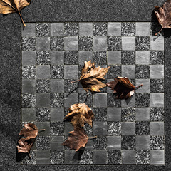 Saturday Self Challenge: Toys (naturum) Tags: 2017 amsterdam autumn blad dambord draughts fall geo:lat=5237130232 geo:lon=492149413 geotagged herfst holland leaf nederland saturdayselfchallenge september ssc wittenburg wittenburgerstraat noordholland nld