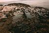 20150608-01451.jpg (tristanloper) Tags: sandiego sandiegoca sandiegocalifornia california sandiegocounty thewest thesouthwest tristanloper creativecommons sunsetcliffs pacificocean free