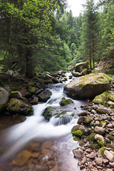 Salanzada stream (ShutterBasset) Tags: nature landscape forest mossy trees pine longexposure water stream rock pebbles cokin nikon d5200 tokina1120 dolomites italy trento
