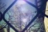 IMG_3668-1 (brettfarrell1) Tags: weldingglass home