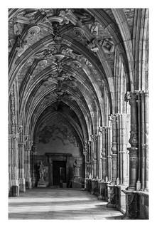 CATEDRAL DE LEON claustro  (España )