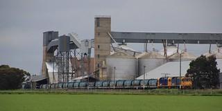 BL28 and BL31 load another rake of grain at Marmalake grain corp