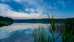 Moonlight serenade (SpectrumLight) Tags: lake water waterscape reed clouds reflections nature scenic scenery sonya7ii sonyilce7m2 fe1635mmf4zaoss sony bluehour dusk twilight calm serenity oasis moon monlight serenade wideangle night