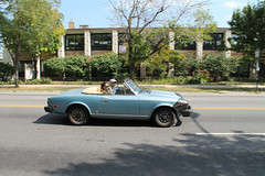 Blue As The Sky (Flint Foto Factory) Tags: chicago illinois urban city late summer early fall autumn september 2017 north edgewater fiat 124 2000 spider convertible roadster italian import car auto automobile sportscar blue aqua moving motion traffic intraffic inmotion emanuel congregation synagogue 5959 nsheridanrd sheridan thorndale saturday afternoon midcentury modern architecture lake michigan worldcars