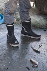 fish and boots (cementley) Tags: england uk unitedkingdom heinrichböllfoundation hbf transatlanticmediafellowship photojournalism englishchannel fishing fishermen fisherman harbor ocean seaside sea kent thanet