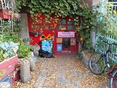 Naturally Beautiful (navejo) Tags: montreal quebec canada nail garage bike parkex
