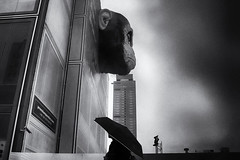 Stormy times announce themselves (www.streetphotography-berlin.com) Tags: planet apes 3 berlin alexanderplatz advertising skulpture woman alone umbrella clouds rain rainyday street streetphotography streetlife monochrome blackandwhite blackwhite