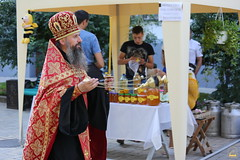 Открытие Святогорской медовой ярмарки (8) 09.08.2017
