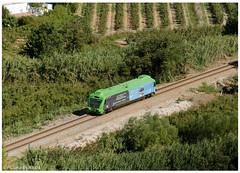 Óbidos 02-10-2016 (P.Soares) Tags: comboio comboios train trains tren transportesxxi terminalintermodal portugalferroviário lusocarris 350 automotora oeste